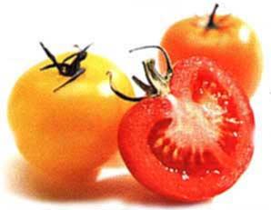 [Изображение: pomidor.jpg]